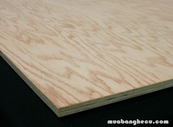 White OAK Plywood (ván ép được làm từ gỗ sồi trắng)